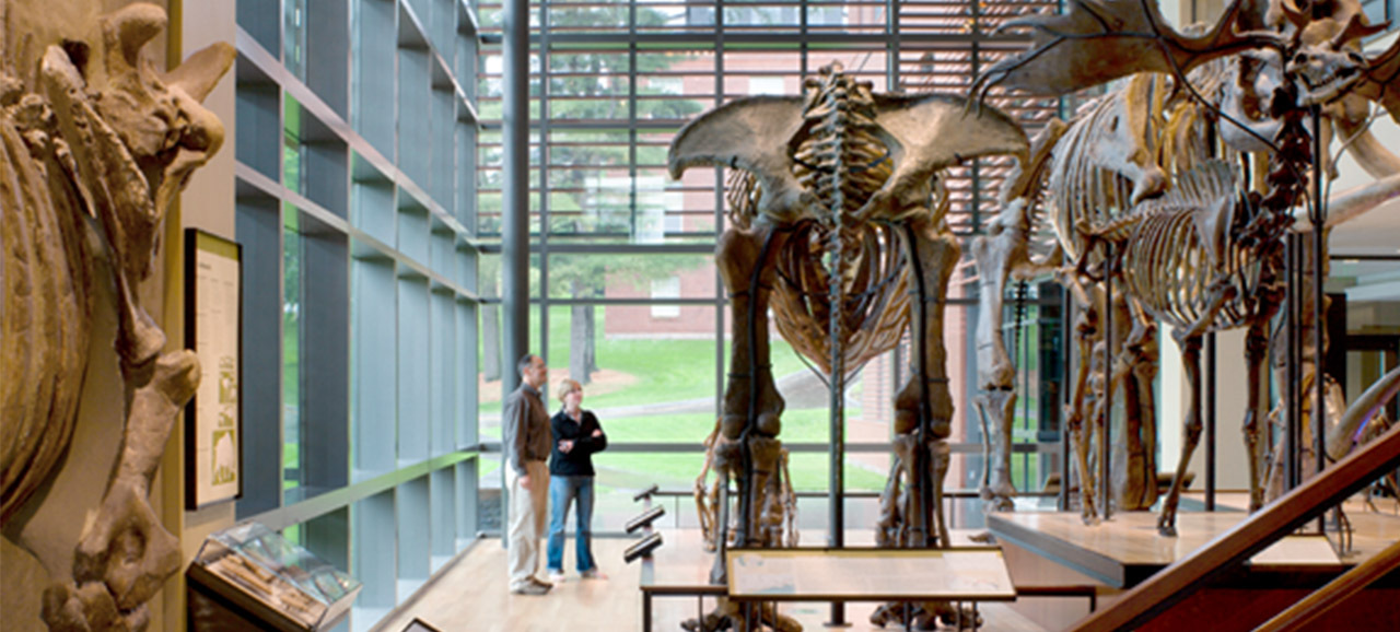 Featured-Image-Amherst-College-Natural-History_