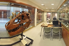 Panoramic composite image of the Museum of Biodiversity stitched together from several separate images...Photo composite by Matt Cashore
